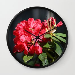 Ruby Red Rhododendron Wall Clock
