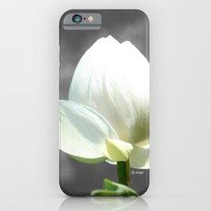 Pure Flower iPhone 6s Slim Case