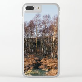 Birch trees basked in warm light at sunset. Upper Padley, Derbyshire, UK. Clear iPhone Case