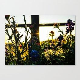Shadows & Wildflowers Canvas Print