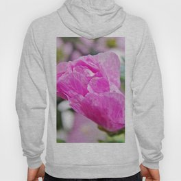 Pink Musk Mallow Rolled-up Hoody