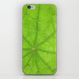 Green Leaf Veins 03 iPhone Skin