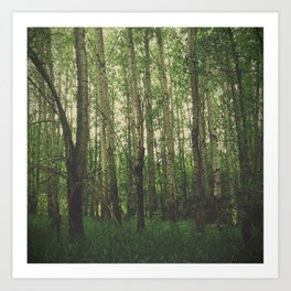 Green Space Art Print