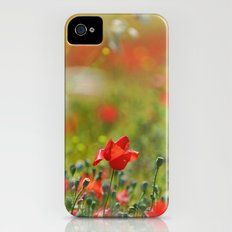 Poppy at the field Slim Case iPhone (4, 4s)