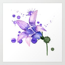 violet flower of bluebell Art Print