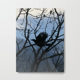 Pied Currawong Silhouette DPG150613 Metal Print