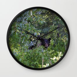 Mother bear hides in the trees- Canadian Rocky Mountains Wall Clock