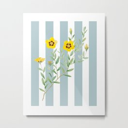 Yellow flowers on blue stripes Metal Print