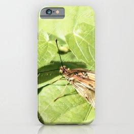 Inquisitive iPhone Case