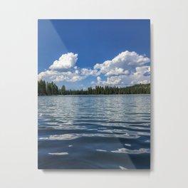 Medco Pond Metal Print