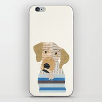 great dane iPhone & iPod Skins featuring great dane by bri.buckley