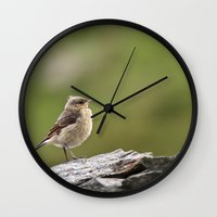 sparrow Wall Clocks featuring Sparrow by Distilled Designs