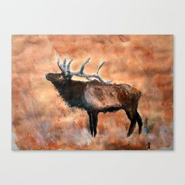 North American Elk Acrylics On Paper  Canvas Print