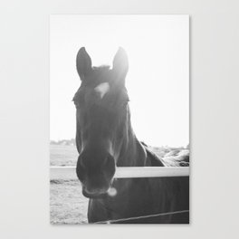 Renegade Black and White Canvas Print