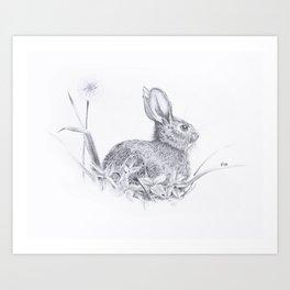 Bunny in the Field Art Print