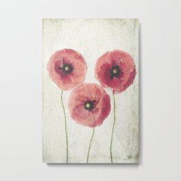 Vintage Poppies  Metal Print