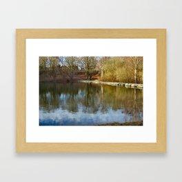 Forest Lake 1 Framed Art Print