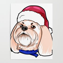 Shih Tzu Dog Christmas Hat Present Poster