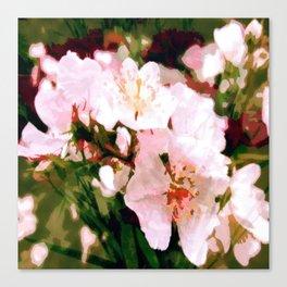 Cherry Vanilla Canvas Print