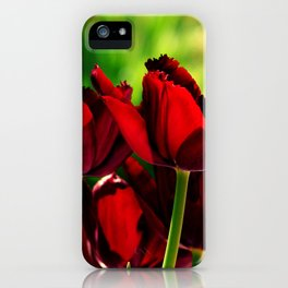 4 Ever Love -- Spring Botanical Ruby Red Tulips iPhone Case