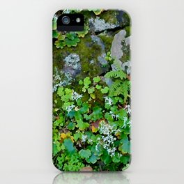moss wall iPhone Case