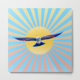 Hawk Starburst Metal Print