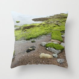 Slippery Path Throw Pillow