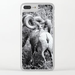 Two Rams bw Clear iPhone Case