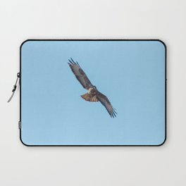 Common Buzzard (Buteo buteo) in flight  blue sky Laptop Sleeve