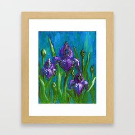 Iris by Mary Bottom Framed Art Print