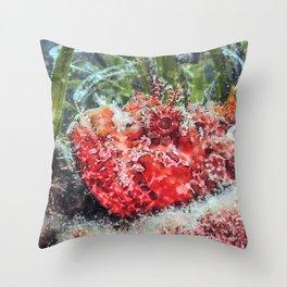 Red Scorpionfish Underwater (Scorpaena scrofa) Close Up Throw Pillow