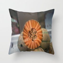 A Melon! Throw Pillow
