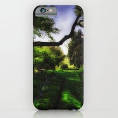 A Walk in the Garden iPhone 6s Slim Case