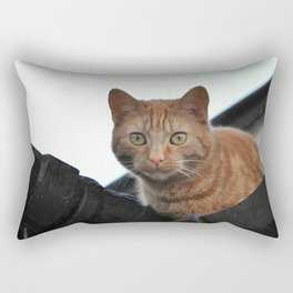 What Are You Looking At? Rectangular Pillow