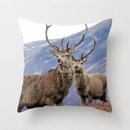 Stags Throw Pillow
