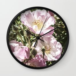 Cool And Luminous Summer Roses Wall Clock