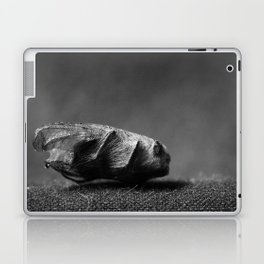 wrapped up fly Laptop & iPad Skin