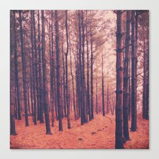 Vintage Pines Canvas Print