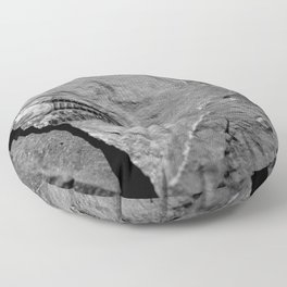 Utah - Trilobite Fossil Crack Floor Pillow