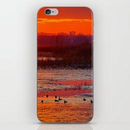 Duck Hole 2 iPhone Skin