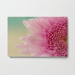 Pink bursts, Floral Macro Photography Metal Print