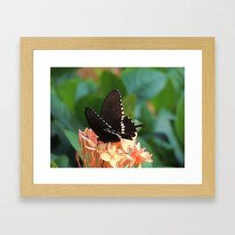 Kowloon Wings Framed Art Print