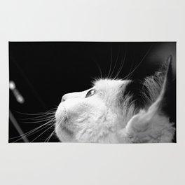 Black & White Cat Rug