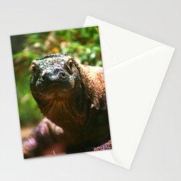Curious Komodo Stationery Cards