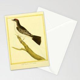 049 gobe mouche (Fr)2 Stationery Cards