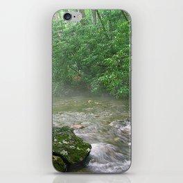 Davidson River iPhone Skin