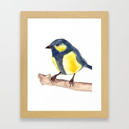 Blue Pinzon Framed Art Print