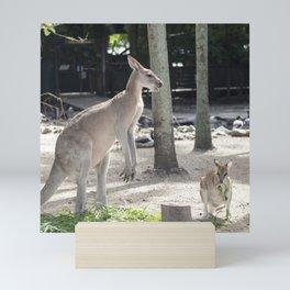 Kangaroo and Wallaby Mini Art Print