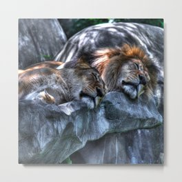 The King and Queen sleep Metal Print