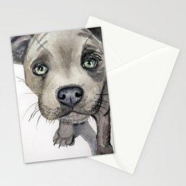 Puppy dog eyes Stationery Cards